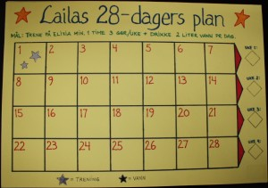 28-dagers plan