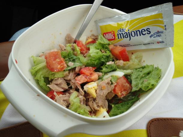 Medbragt tunfisksalat med majones